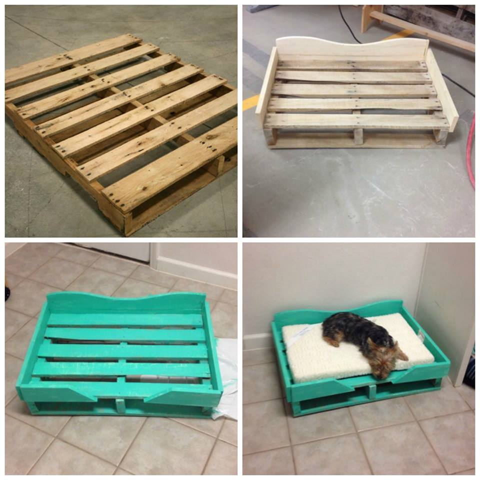 DIY PALLET DOG BED & looks so easy to make