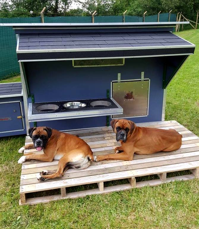 how to make a doghouse out of pallets